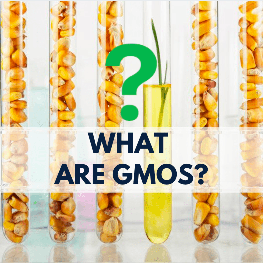 corn kernels in test tubes, green question mark and navy blue text