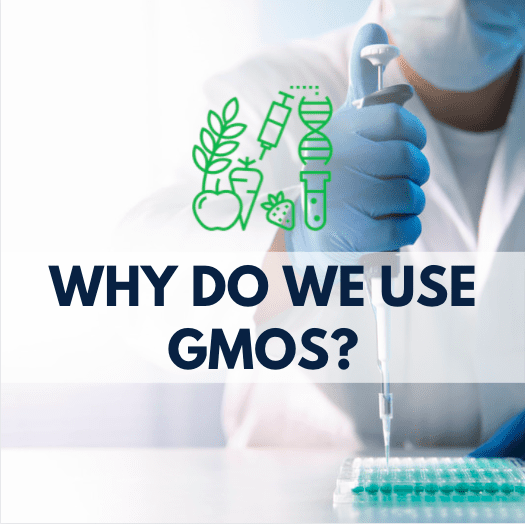 person using a pipette, GMO icon and navy blue text